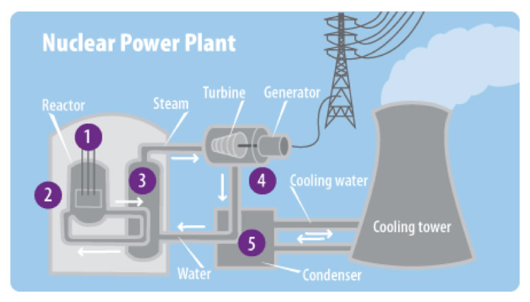 how a nuclear power plant works essay